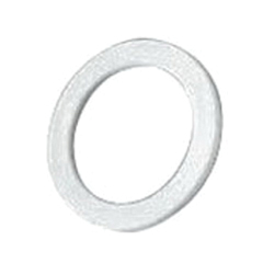 Appleton® 075NPTETS NYLON IP WASHER 075NP