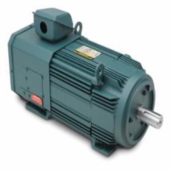 100HP,FL2890,TEBC,1750RPM,460V,3PH,60HZ,