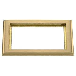 PREMISE WIRING SB3084 Rectangular Carpet Flange, 8.06 in L x 6 in W, For Use With Flush Floor Box, Brass