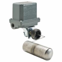 Schneider Electric 9038CW34Z20 Liquid Level Sensors/Float Switches