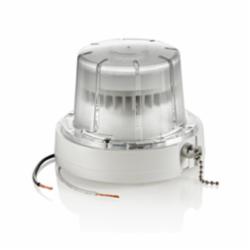 LEV 9852-LED 900 LUMEN 3000K PULL-CHAIN LED LAMPHOLDER WITH 10W LED LAMP AND GUARD, 120V