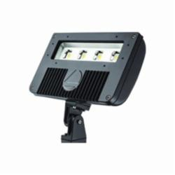 Lithonia Lighting® DSXF2 LED 3 50K M2 Flood Light Fixture, LED Lamp, 120/277 VAC, Bronze Housing
