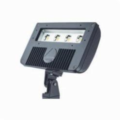 Lithonia Lighting® DSXF2 LED 4 50K M2 Flood Light Fixture, LED Lamp, 120/277 VAC, Bronze Housing