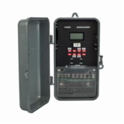 TORK DZS200BP 2-CHNL SPDT DIG TMR