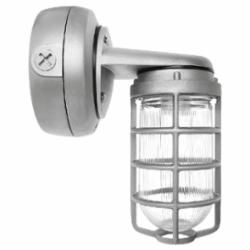 RAB Lighting VP CFL BRACKET 32W QT 1/2 WHITE WITH GL GLOBE CAST GD