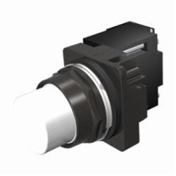 SIEMENS 52BL4DBXB PIL LT NEMA4X FV 24V LED WHITE PLASTIC