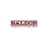 BALDOR L100X1 JAW COUPLING TYPE L